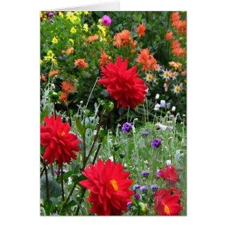 Dahlia Garden Birthday Card