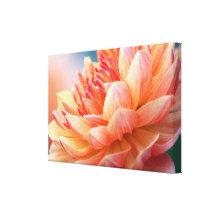 Dahlia Glow Macro Canvas Print