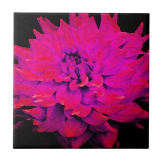 Dahlia - Honeymoon  - Deep Pink - Red Tiles