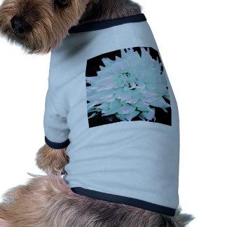 Dahlia - Honeymoon Dog Clothes