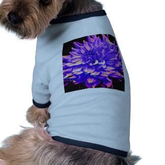 Dahlia - Honeymoon - Purple Pet Tee