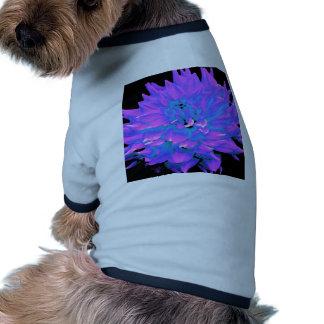 Dahlia - Honeymoon - Radiant Orchard Dog Clothes