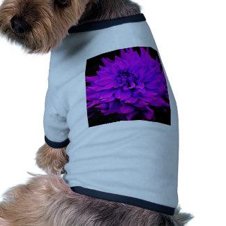 Dahlia - Honeymoon - Radiant Orchard Dog T Shirt