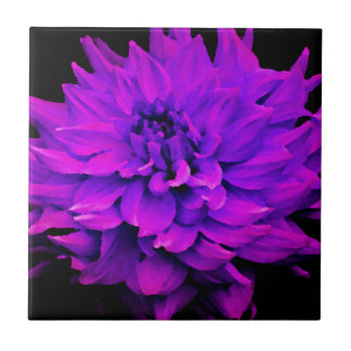 Dahlia - Honeymoon  - Radiant Orchard Tile