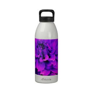 Dahlia - Honeymoon  - Radiant Orchard Drinking Bottles