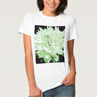 Dahlia - Honeymoon Tee Shirt