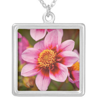 Dahlia III Necklace