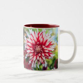 Dahlia in Peppermint Colors Two-Tone Coffee Mug