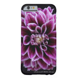 Dahlia iPhone 6 case