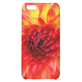 'Dahlia' iPhone Case iPhone 5C Cover