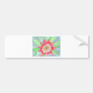Dahlia.JPG Bumper Sticker