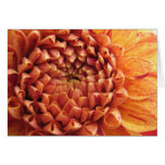 dahlia - notecard stationery note card