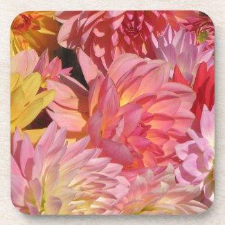 Dahlia Petals Coasters