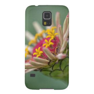 Dahlia phone or tablet case