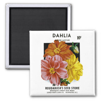 Dahlia Vintage Seed Packet Magnets