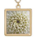 Dahlia (White) Necklace