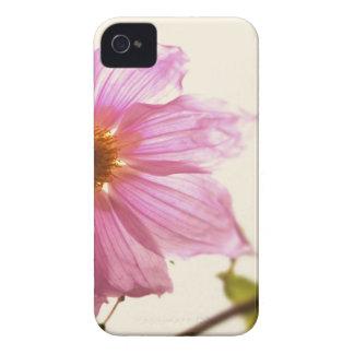Dahlia Whiteout iPhone 4 Case-Mate Case