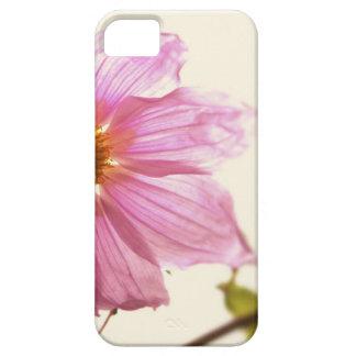 Dahlia Whiteout iPhone 5 Case