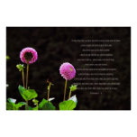 Dahlia With Ecclesiastes Verses Posters