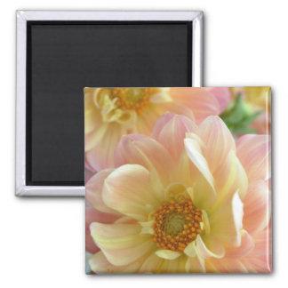 dahlias 2 inch square magnet