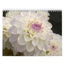 dahlias calendar