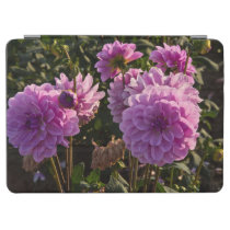 Dahlias, dahlia farm, Canby, Oregon, USA 5 iPad Air Cover