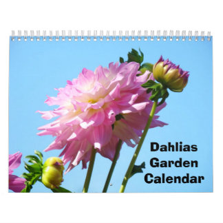 Dahlias Garden Calendar Photography Flowers
