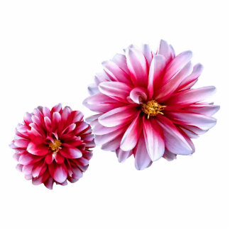 Dahlias Mommy and Child Hand In Hand Photo Cutouts
