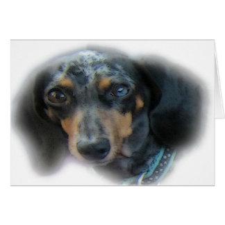 dahshund tarjeta de felicitación