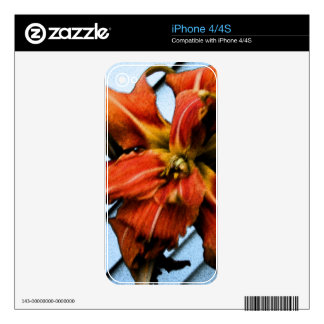 Daily Lily Skins For iPhone 4