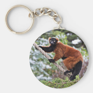 Daily Routine Of A Lemur Basic Round Button Keychain