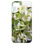 Dainty and Delicate iPhone 5 Cover