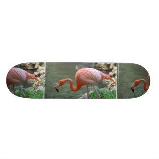 Dainty Flamingo Skate Deck