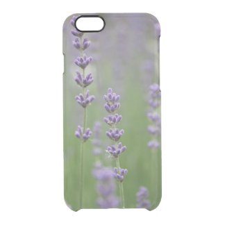 Dainty Lavender Clear iPhone 6/6S Case