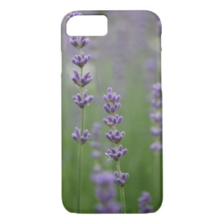 Dainty Lavender iPhone 8/7 Case