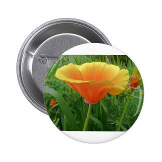 Dainty Orange Posie Button