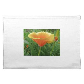 Dainty Orange Posie Cloth Placemat