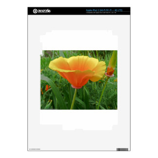 Dainty Orange Posie Decal For iPad 3