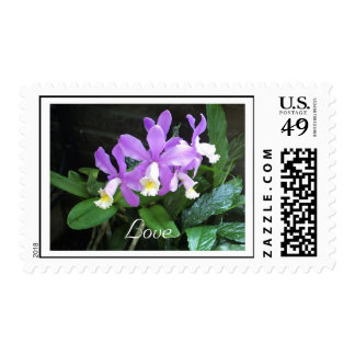 Dainty Orchids Love Postage
