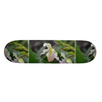 Dainty Orchids Skate Decks