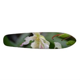 Dainty Orchids Custom Skateboard
