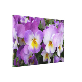 Dainty Pansies   ~ Wrapped Canvas Print