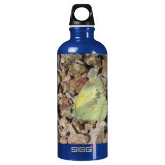 Dainty Sulphur Butterfly Bottle