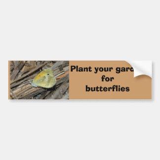 Dainty Sulphur butterfly bumper sticker