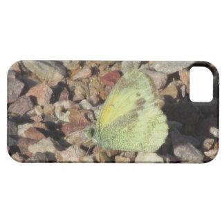 Dainty Sulphur Butterfly iPhone 5 Case