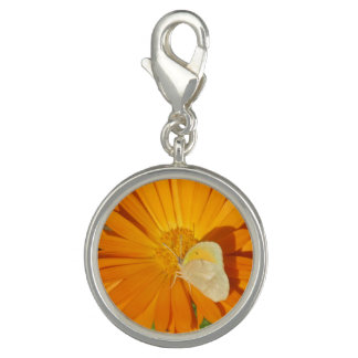 Dainty Sulphur Butterfly on Golden Flower Charms