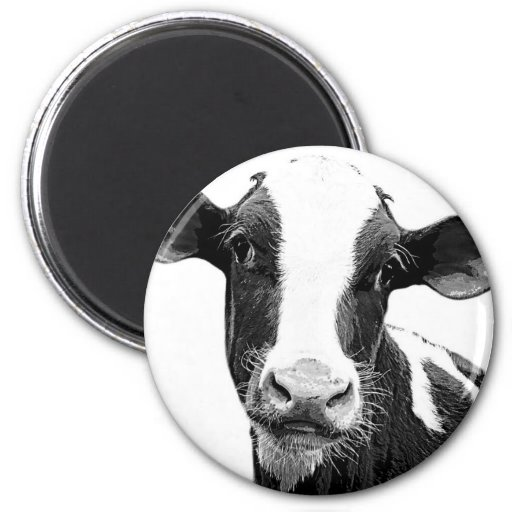 Dairy Cow - Black and White Dairy Calf 2 Inch Round Magnet
