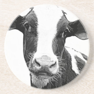 Dairy Cow - Black and White Dairy Calf Drink Coaster
