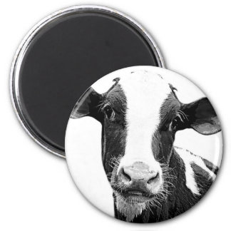 Dairy Cow - Black and White Dairy Calf Magnet