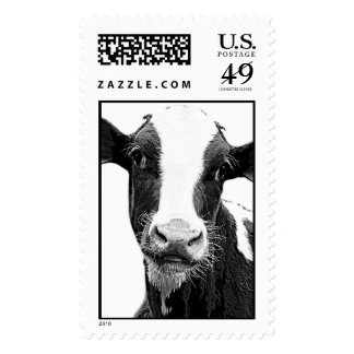 Dairy Cow - Black and White Dairy Calf Postage Stamps